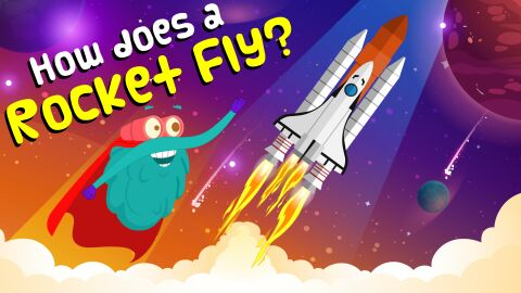 How does a rocket fly?
