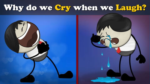 Why do we cry when we laugh?