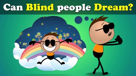 Can blind people dream?