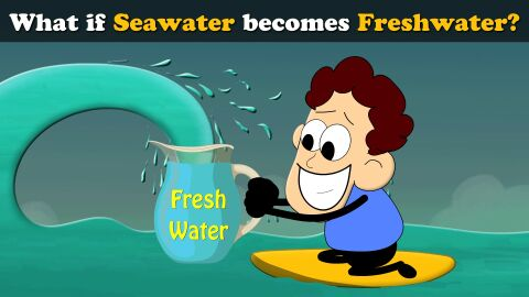What if seawater becomes freshwater?