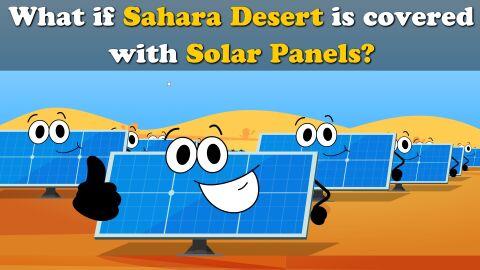 What if Sahara desert is covered in solar panels?
