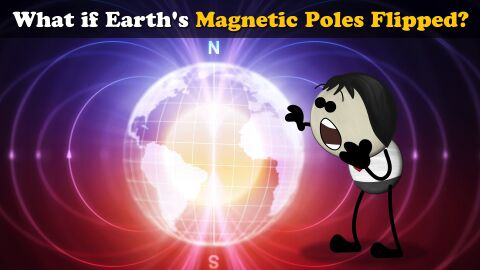 What if Earth's magnetic poles switched?