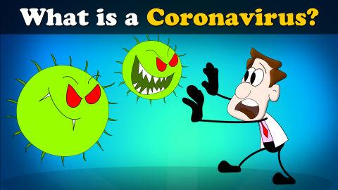 What is a Coronavirus?