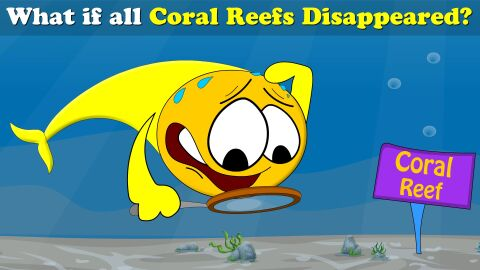 What if all coral reefs disappeared?