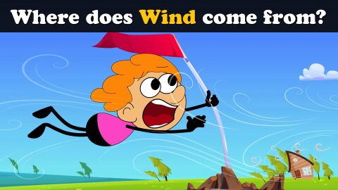 Where does wind come from?