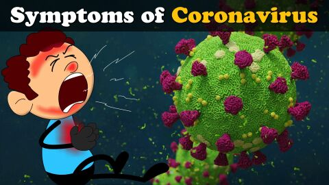 Symptoms of Corona virus?