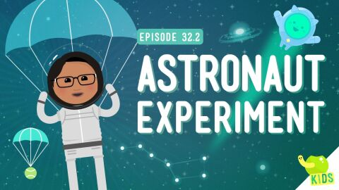 Astronaut Experiment