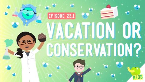 Vacation or Conservation (Of Mass)