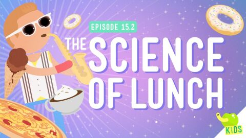 The Science of Lunch