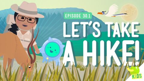 Lets Take a Hike (NGSS)