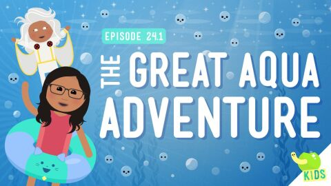 The Great Aqua Adventure (NGSS)