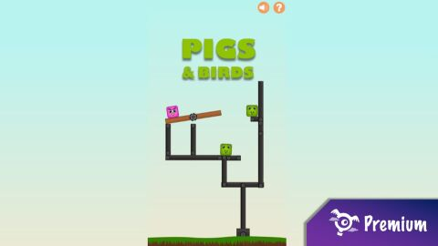Pigs and Birds